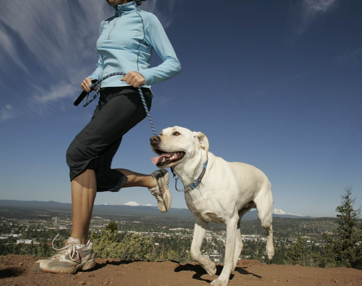 Trail Running Dog with Woman