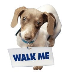 Photo of Dog with Sign Asking, Walk Me