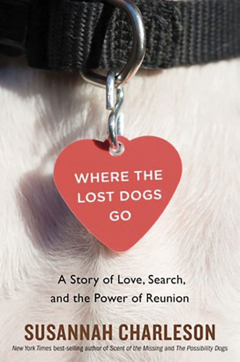 dog book where the lost dogs go