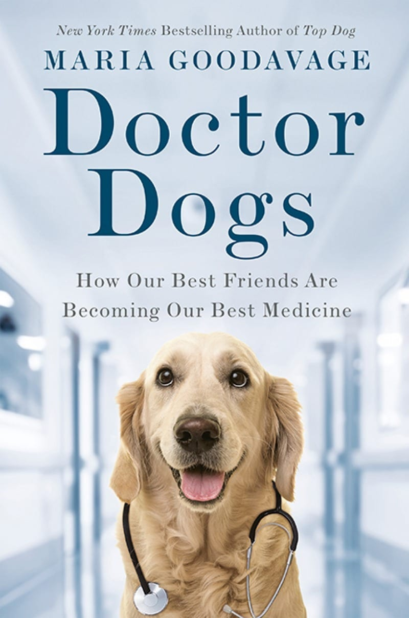 doctor_dogs_book_cover