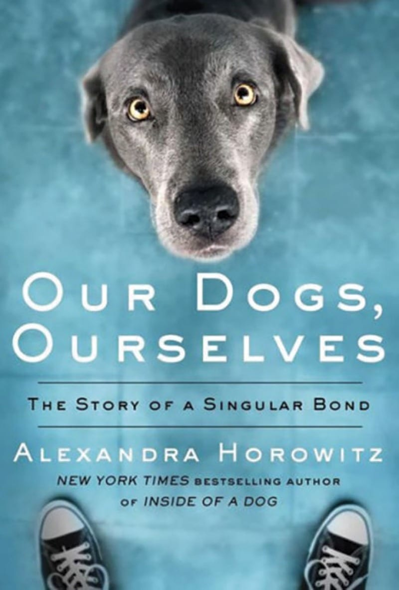 our-dogs-ourselves book cover